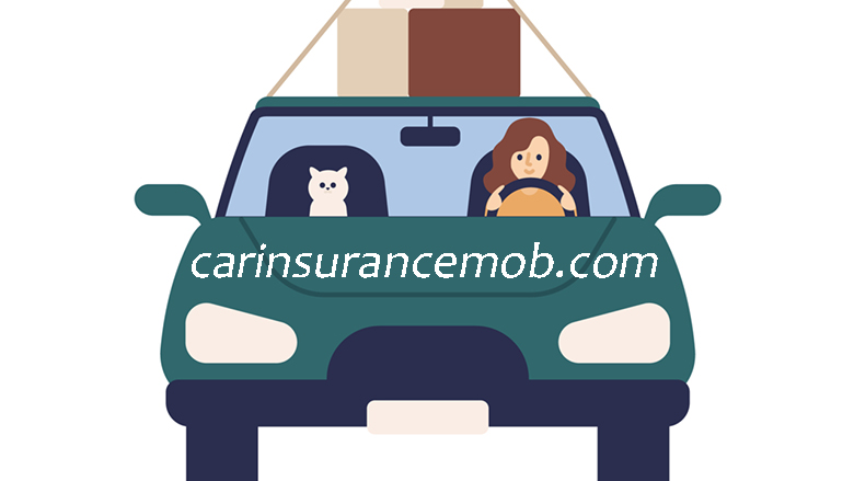 A Guide to Understand Car Insurance Rates and Coverage